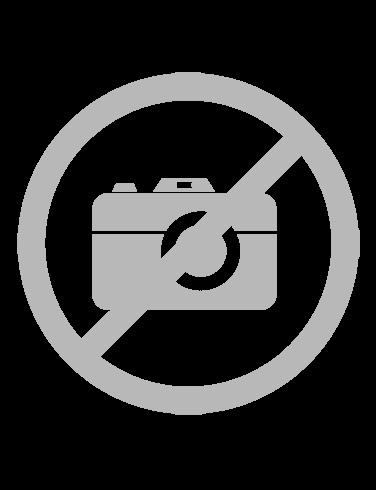 Komplet 2 majic Champion® kratek rokav - siva / črna